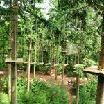 Plattegrond Bosgebied